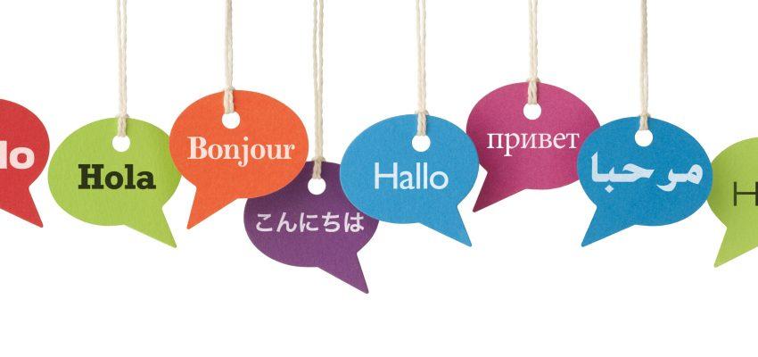 طراحی سایت دو زبانه یا چند زبانه